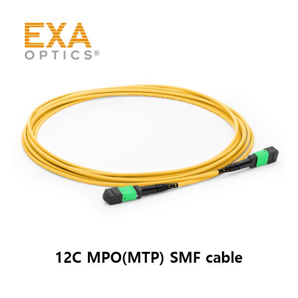 EXA-12C-MPO-SMF